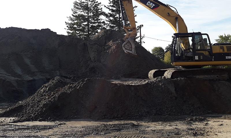Gaby Trepanier Excavation Terre Noire